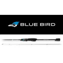 CANNA FAVORITE NEW BLUE BIRD