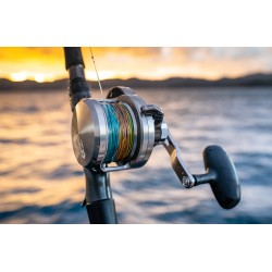 MULINELLO DAIWA SALTIGA LD 2 SPEED