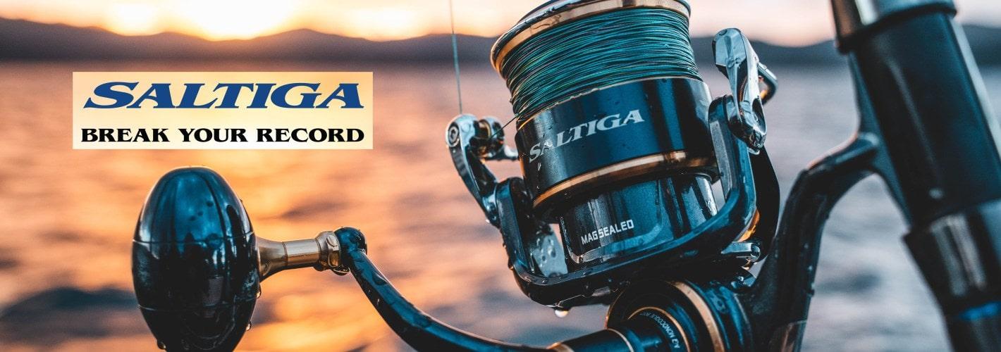 MOTORE ELETTRICO MINNKOTA ENDURA C2 CARPFISHING SPINNING TRAINA CARP FISHING